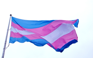 Transgender Flag - LA Speech
